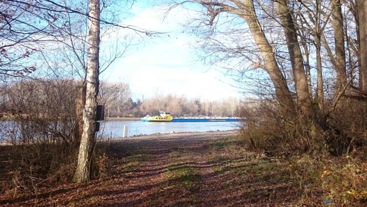 Sonntagsspaziergang_Croissant_Elisabethenwört_Schiff-auf-Rhein.jpg