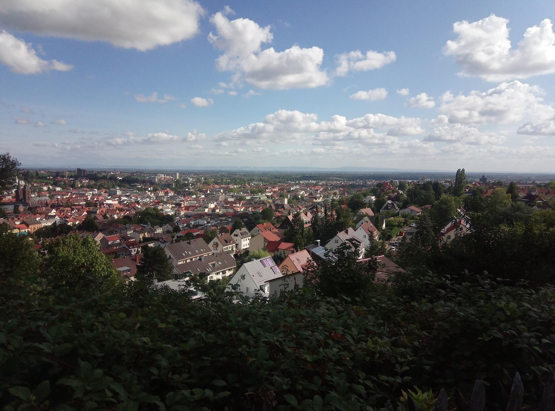 Sonntagsspaziergang_Croissant_Pfalz_Blick auf Neustadt.jpg