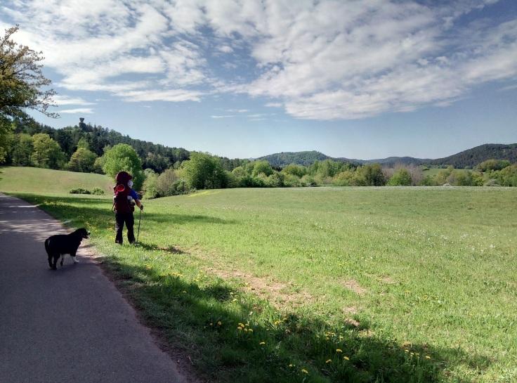 Wandertipp_Coissant_Pfalz_Busenberg_Panorama