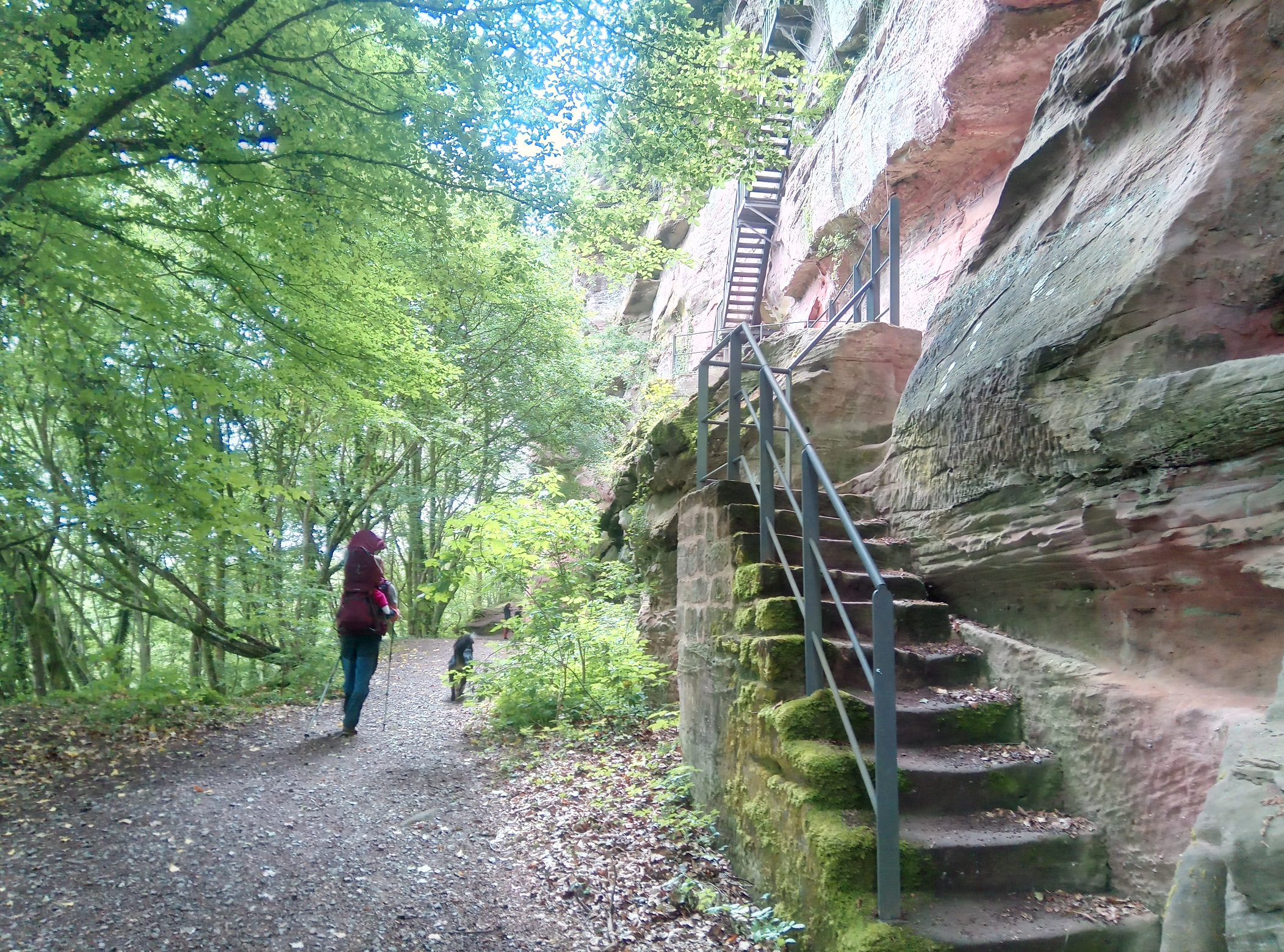 Wandertipp_Croissant_Wilgartswiesen_Falkenburg Aufgang